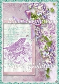 Garden Memories Botanical Backing Background Paper
