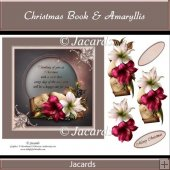 Christmas Book & Amaryllis
