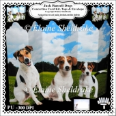 Jack Russell Dogs - Concertina Card Kit Tags Envelope Decoupage