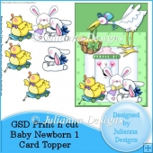 GSD PNC Baby Newborn 1 Card Topper/Front Cutting File