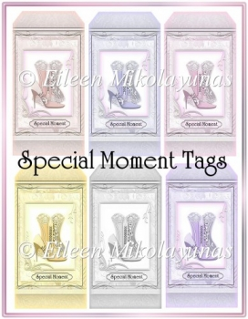 Special Moment Celebration Cottage Chic Corset Tag Set
