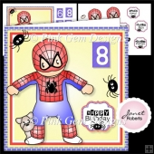 Spider Hero Andy Mini Kit