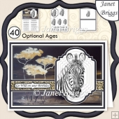 PORTRAIT OF A ZEBRA A5 Pyramage Ages & Insert Kit