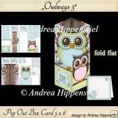 Pop Out Box Card Owl 3