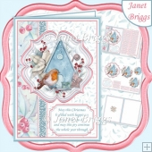 ROBIN & BIRDHOUSE Christmas A5 Portrait Pyramage & Insert Kit