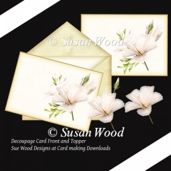 Magnolia Florals Card Topper or front.