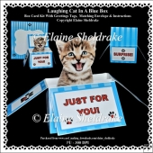 Laughing Kitten In A Blue Box - Box card Kit With Greetings Tags