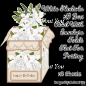 White Gladiolus 3D Box Card & Envelope Kit