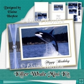 Killer Whale Birthday Mini Kit