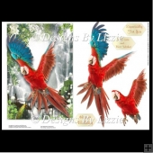 Red Parrot Card Front and Decoupage