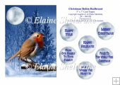 Christmas Robin Redbreast - 5 x 7 Card Topper & Ass. Greetings