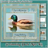 Swimming Duck Mini Kit