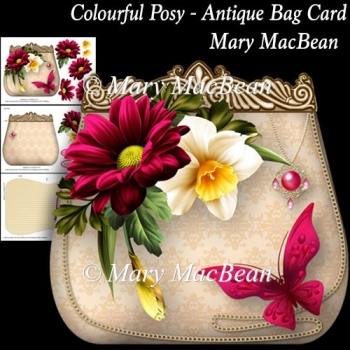 Colourful Posy - Antique Bag Card