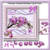 Framed Orchids Birthday Card Front