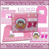 Hedgehog Harry Flower Card - Pink