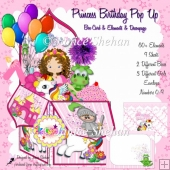 PRINCESS BIRTHDAY 3D POP UP BOX CARD KIT