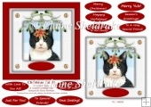 Christmas Cat (1) 6 x 6 Card Topper With Masses Of Greetings Tag