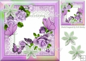 pretty purple roses, butterflies on lace with rainbow frame 8x8