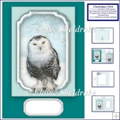 5 x 7 Christmas Owl Card Kit With Matching Insert Envelope Tags