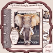 MALE ELEPHANT Age is Just a Number 8x8 Birthday Decoupage Kit