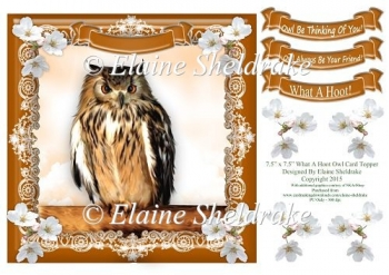 "What a Hoot Owl - 7.5"" x 7.5"" Card Topper"