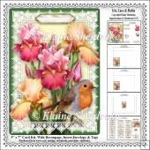 Iris, Lace & Robin - 5 x 7 Card Kit With Decoupage, Insert etc.