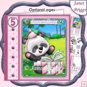 PANDA & SURPRISE GIFT 7.5 Decoupage Ages & Insert Kit