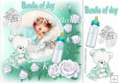 cute little bundle of joy baby boy/girl 8x8
