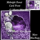 Midnight Forest Card Front