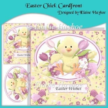Easter Chick Cardfront