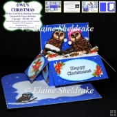 Owls Christmas - 3D Box Card Kit & Matching Envelope PU 300 dpi
