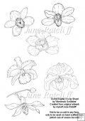 An Array of Orchids - Digital Stamp Sheet