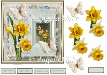 Daffodils and butterfly