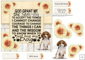 Dog Lovers Serenity Prayer
