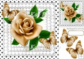pretty gold roses on lace with polka dots & butterflies 8x8