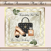 Fashion Accessories Mini Kit 4