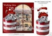 Silver Tabby Christmas Kitten Cat In A Mug + Decoupage
