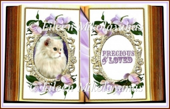 Precious Kitty Open Book Shape Card Insert