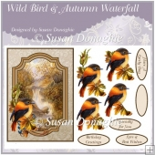 Wild Bird & Autumn Waterfall Scene