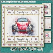 Red Beetle Mini Kit