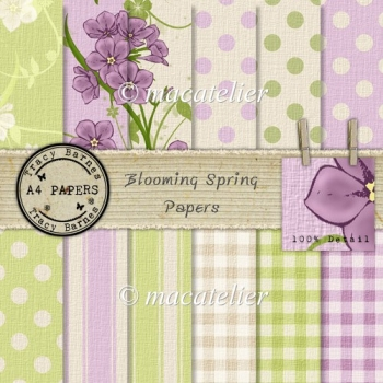 Blooming Spring A4 Papers