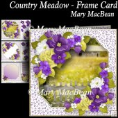 Country Meadow - Frame Card