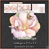 Flower Shaped Card Kit 1336