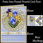 Pretty Irises Framed Pyramid Card Front