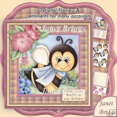 Buzzin' Bee Various Occasions 7.5 Decoupage Kit