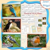 BIRDS 2019 UK Easy Fold Purse Calendars