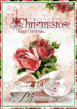 Christmas Rose Backing Background Paper