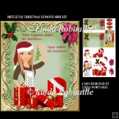 Mistletoe Christmas Humour Mini Kit