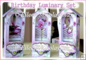 Happy Birthday Luminary Set of 3 with Directions