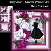 Assignation - Layered Frame Card